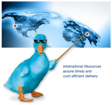International Resources assure timely and cost-efficient delivery